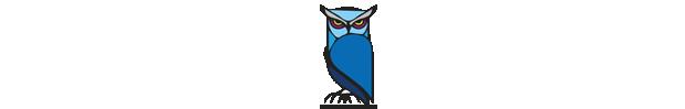 blue-owl-ueberuns
